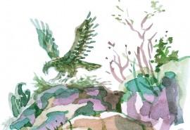 Орловото Гнездо
