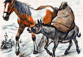 Магаре и кон